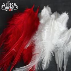 Albastar - Albastar Saddle Hackle Tüy 32535